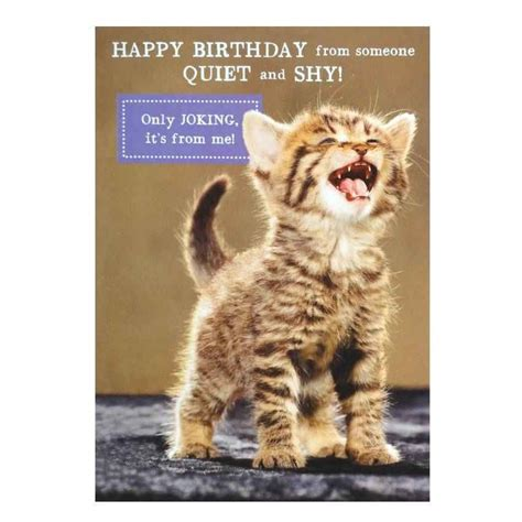 how to make a cat card birthday card collection cat birthday cards animated