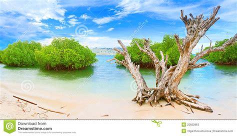 panorama island panorama island stock photos image 22822863