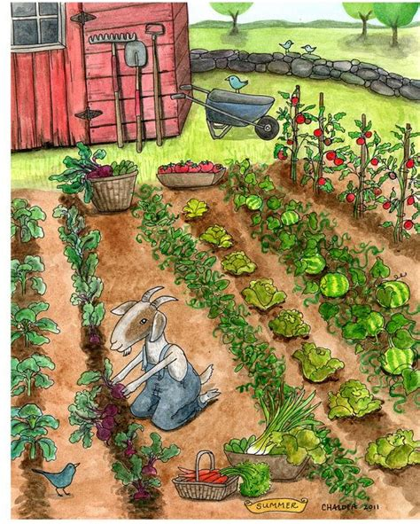 vegetable garden drawing summer wall 5 x 7 print of a watercolor vegetable