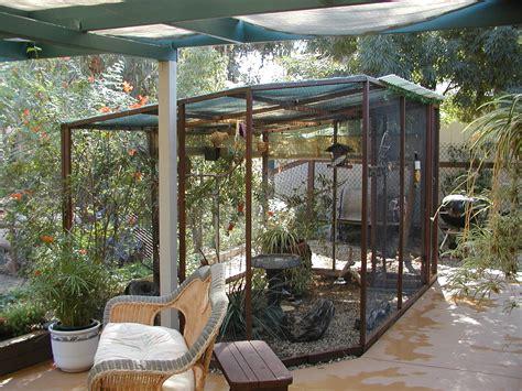 indoor plan bird aviary plans indoor how to build