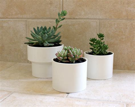 planters for succulents how to make planters for succulents out of pvc tip junkie
