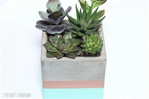 cactus planters cactus succulent planter bookends lydi out loud
