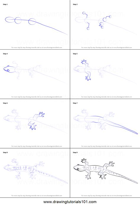 how to draw a how to draw a lizard printable step by step drawing sheet