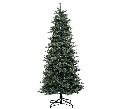 qvc bethlehem lights trees bethlehem lights 7 5 slim blue spruce tree