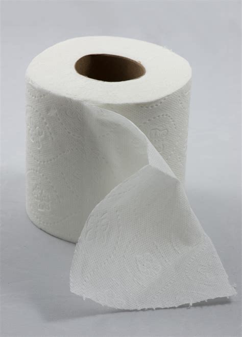toilet paper rolls file roll of toilet paper with one sheet folded in