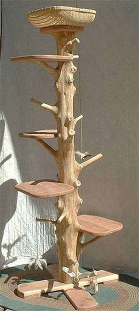 best tree for cats 1000 ideas about cat trees on cat furniture