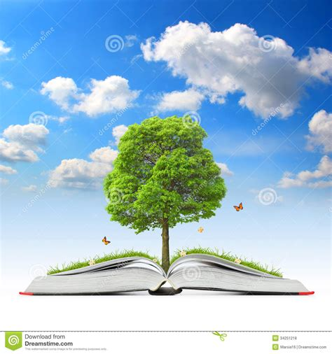 the tree picture book open book with tree and grass royalty free stock photos