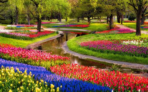 images of beautiful flower gardens beautiful garden of flowers wallpaper