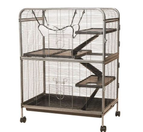 all living things luxury rat pet home buying a rat cage on a budget pets amino