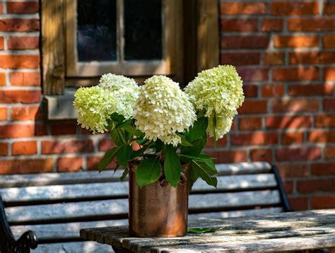 Leuke Decoratie Voor Op Salontafel by Decoratie Voor Op Tafel Stillevens Of Bloemen Als