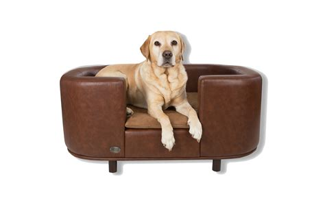 best sofa for dogs best sofa beds