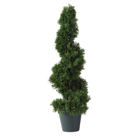potted topiary plants 2 foot cedar spiral topiary potted 5160