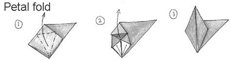 petal fold origami terms to origami