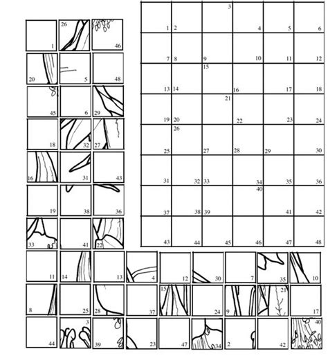 grid drawing to reveal the picture carefully copy the lines