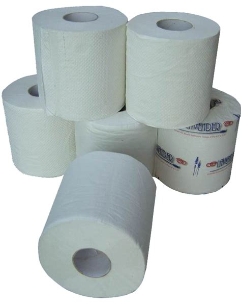toilet paper rolls world top pictures toilet paper roll pics