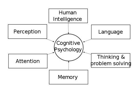 cognitive psychology cognitive psychology wikiversity
