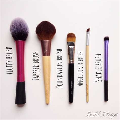 brushes for studio 5 top 5 makeup brushes bolt blogs