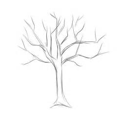 how to draw tree pictures how to draw a tree dr