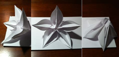 carambola flowers origami carambola flowers by sprung go origami html autos