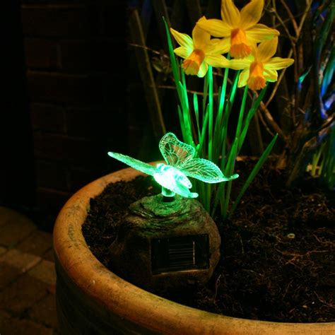 garden decoration lights garden solar lights and tips on choosing the right one