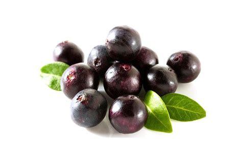 acai berry acai berry juice weight loss