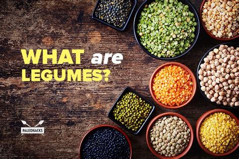 what are what are legumes