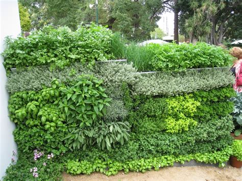 garden wall melbourne diy mobiwall now instant vertical gardens
