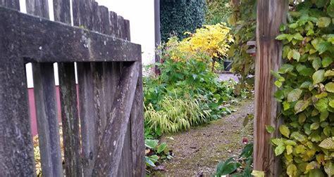 Der Unwiderstehliche Garten by Gartenradio Barbara Frischmuth Und Ihr Unwiderstehlicher