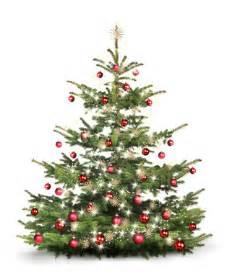 der weihnachtsbaum weihnachtsbaum christbaum