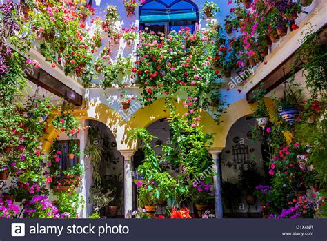 los patios cordoba courtyards festival of cordoba 2016 la fiesta de los