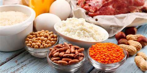 alimentos con alto contenido en proteinas alimentos ricos en prote 237 nas