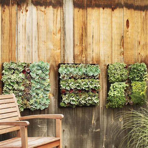 planter walls in gardens outdoor living wall planters the green
