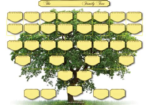 blank rubber sts family tree template family tree template a4