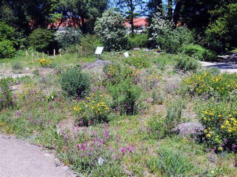 Der Garten Wien by Der Botanische Garten Stadtbekannt Wien Das Wiener