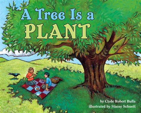 the tree picture book a tree is a plant by clyde robert bulla illustrated by