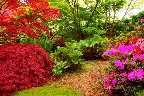 green garden flowers green garden with flowers wallpaper