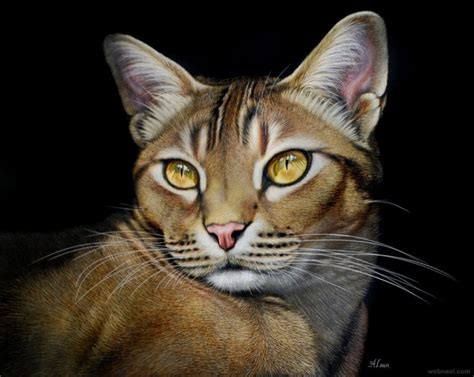 cat painting photos 20 beautiful and realistic animal paintings by lara