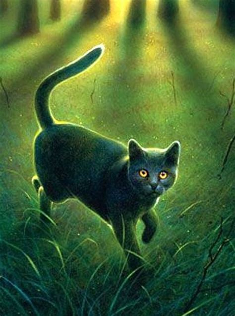cat painting guide 119 best images about warrior cats four clans on
