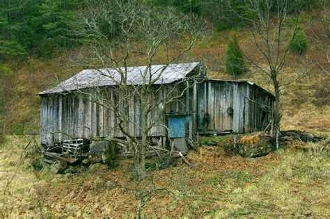 1 Bedroom Cabins In Pigeon Forge Tn shack wikipedia