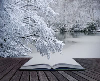 the snow picture book wall to wall books friday