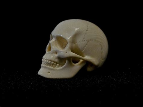 ivory skull quot mammoth ivory quot skull carving