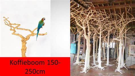 buddha4all.nl   koffie bomen & natuurlijke materialen