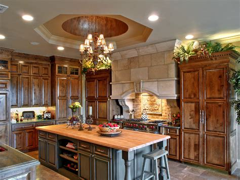 Home Decorative Plants amazing kitchens traditional kitchen other metro