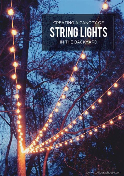 tree lights with different settings 25 best ideas about globe string lights on
