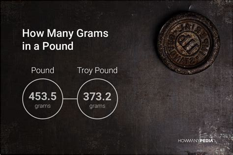 how many in a gram how many grams in a pound howmanypedia