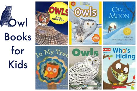 owl picture books nighttime preschool activities owl painting and
