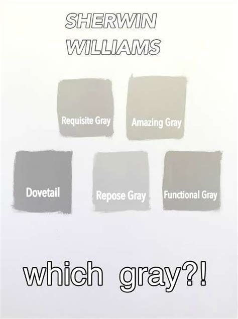 best gray paint colors sherwin williams sherwin williams gray versus greige