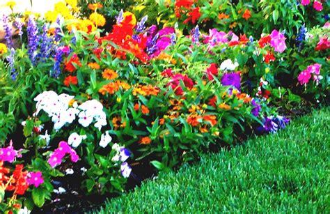 front yard flower garden front yard flower gardens sky designs homelk