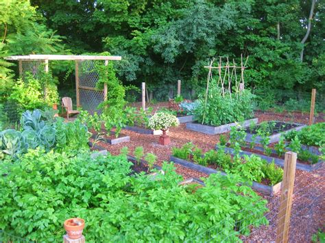 kitchen vegetable garden the easy kitchen garden