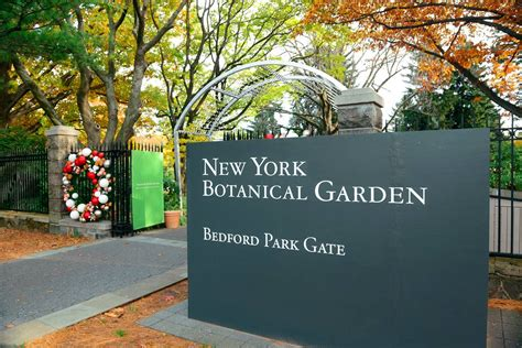 botanical garden nyc 15 best botanical gardens nyc medicine at the new
